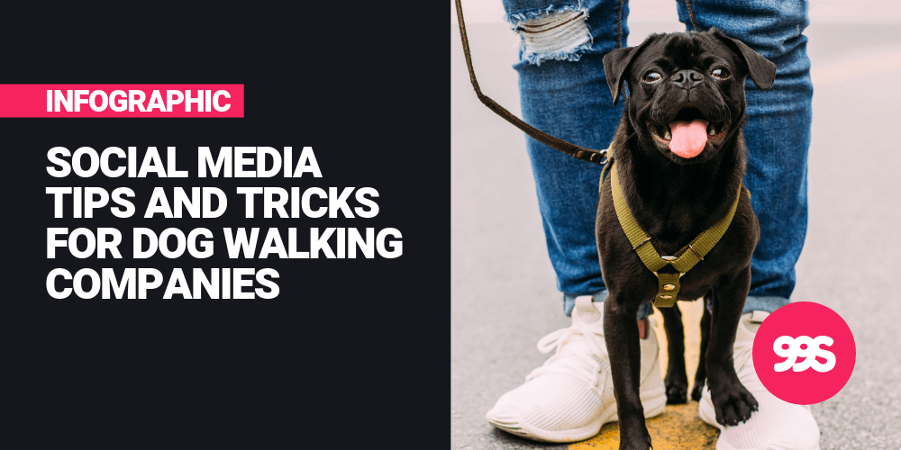 Infographic: Social media tips for dog walking businesses